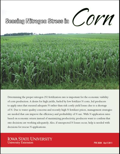 Sensing Nitrogen Stress in Corn