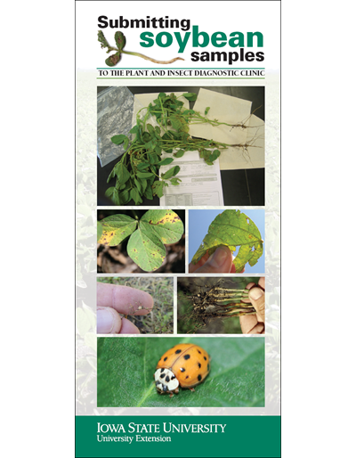 Submitting Soybean Samples to the Plant and Insect Diagnostic Clinic