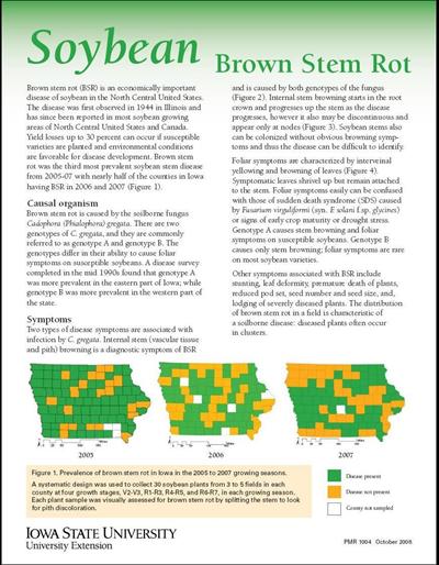 Soybean Brown Stem Rot