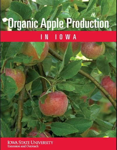 Organic Apple Production in Iowa