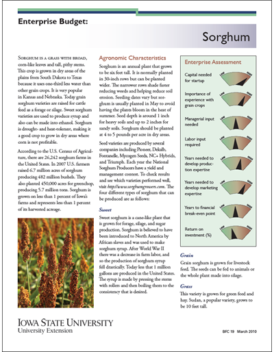 Enterprise Budget: Sorghum