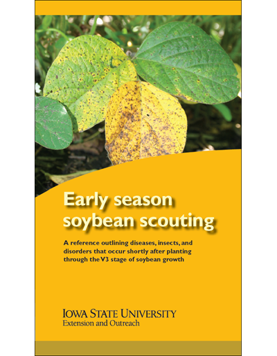 Early Season Soybean Scouting