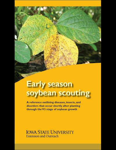 Early Season Soybean Scouting
