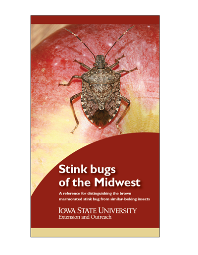 Stink Bugs of the Midwest (Unit = 100)