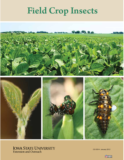 Field Crop Insects