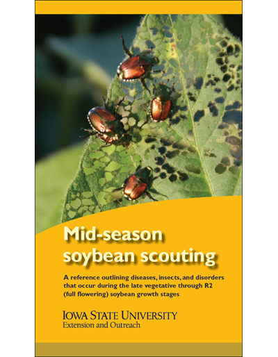 Mid-season Soybean Scouting