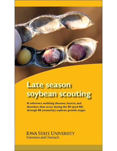 Late Season Soybean Scouting
