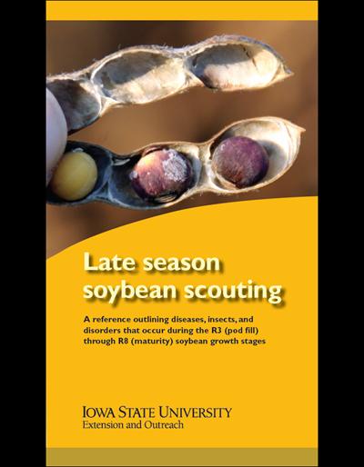 Late Season Soybean Scouting