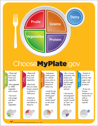 MyPlate Poster for Adults