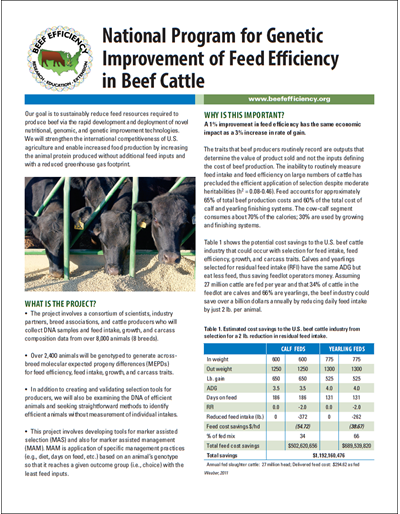 National Program for Genetic Improvement of Feed Efficiency in Beef Cattle