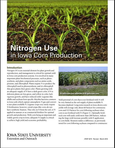 Nitrogen Use in Iowa Corn Production