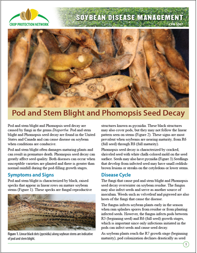 Pod and Stem Blight and Phomopsis Seed Decay