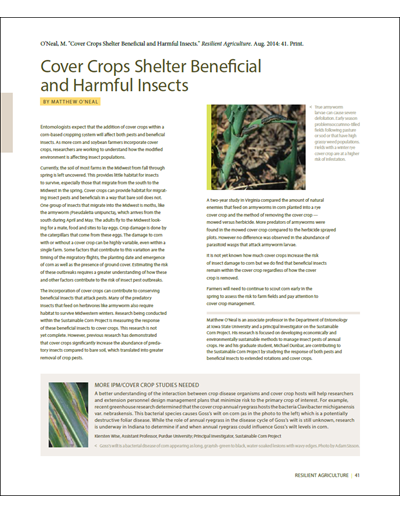 Cover Crops Shelter Beneficial and Harmful Insects