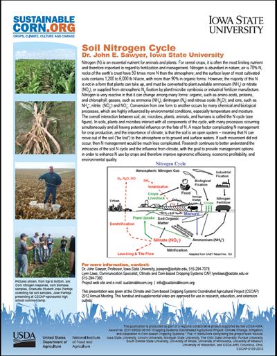Soil Nitrogen Cycle