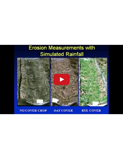 Cover Crop Selection and Management Part 1 of 3 (Video)