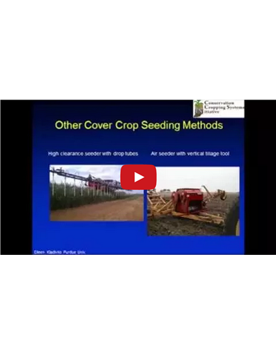 Cover Crop Selection and Management Part 3 (Video)