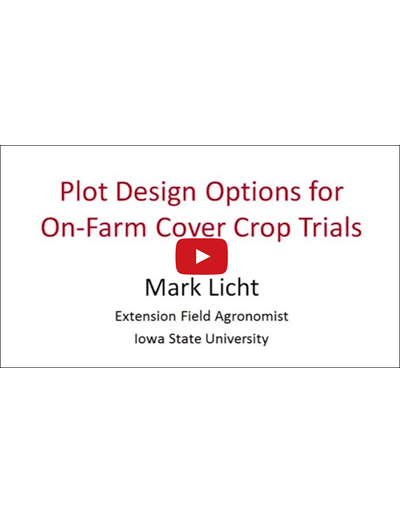 Plot Design Options for On-Farm Cover Crop Trials (Video)