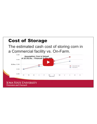 Basis, Futures Carry and the Cost of Storage