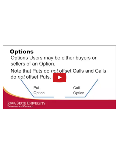 Marketing Tools: Options
