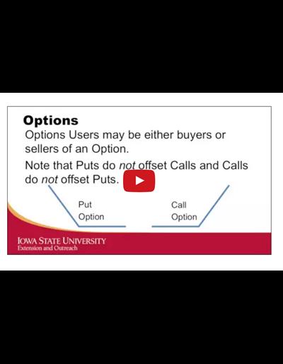 Marketing Tools: Options