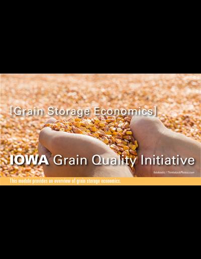 Grain Storage Economics Module