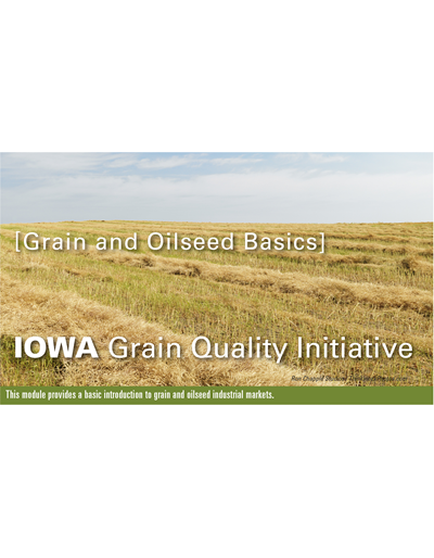 Grain & Oilseed Basics Module