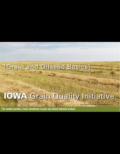 Grain & Oilseed Basics Module