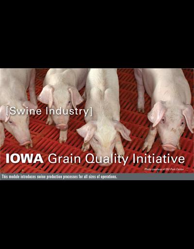 Swine Industry Module