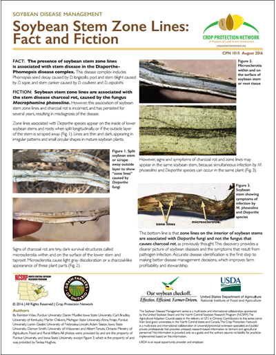 Soybean Stem Zone Lines: Fact and Fiction
