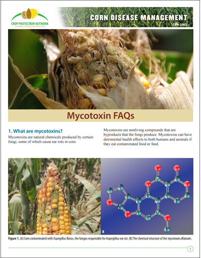 Mycotoxin FAQs