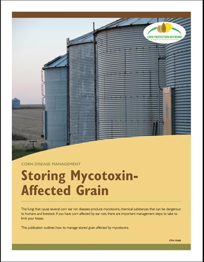 Corn Disease Management - Storing Mycotoxin-Affected Grain