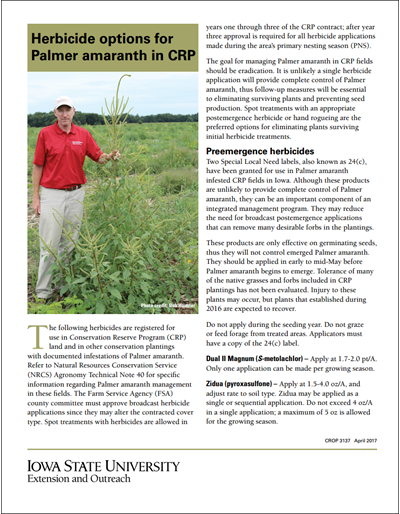 Herbicide options for Palmer amaranth in CRP
