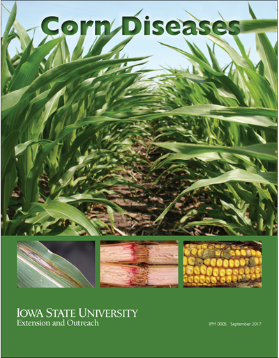 Corn Diseases (Unit=50)