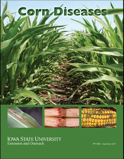 Corn Diseases (Unit=50)