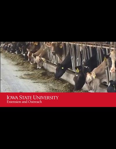 Beginning Dairy Farmer Video Series - Grassway Dairy - Part 3