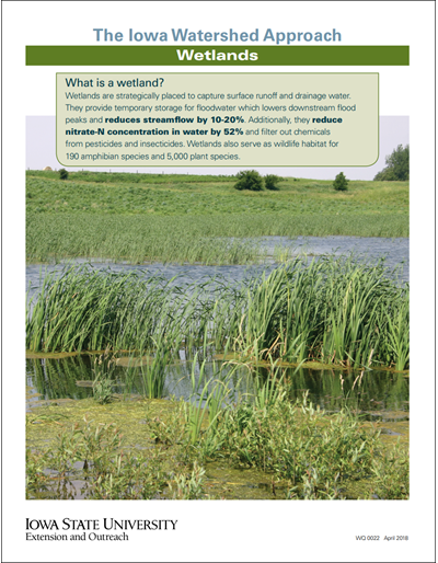 The Iowa Watershed Approach - Wetlands