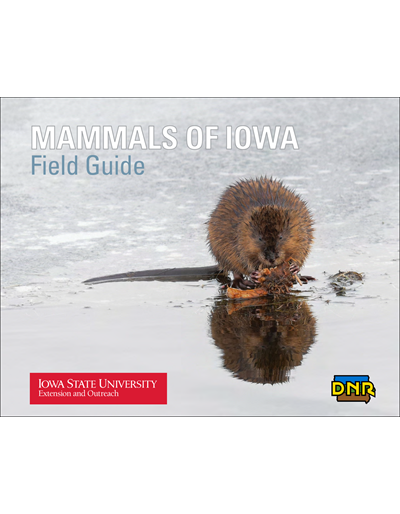 Mammals of Iowa Field Guide