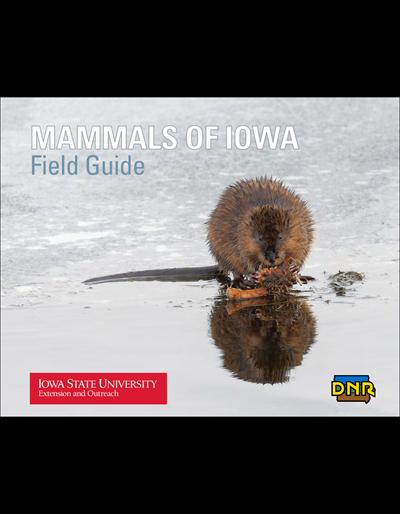 Mammals of Iowa Field Guide