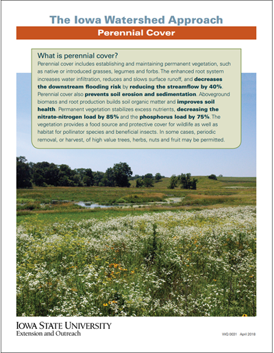 The Iowa Watershed Approach - Perennial Cover