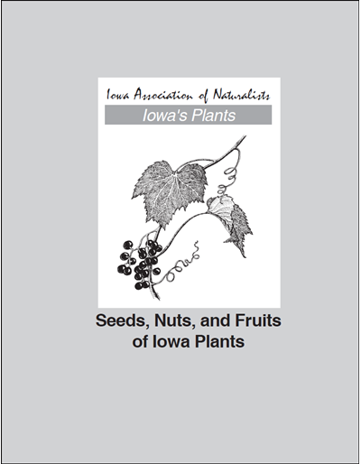 Seeds, Nuts, and Fruits of Iowa Plants -- Iowa's Plants