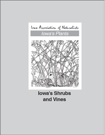 Iowa's Shrubs and Vines -- Iowa's Plants