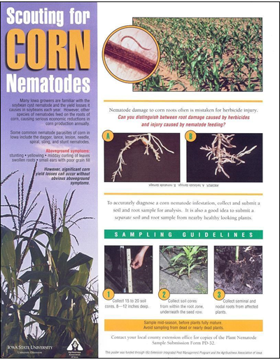 Scouting for Corn Nematodes (poster)