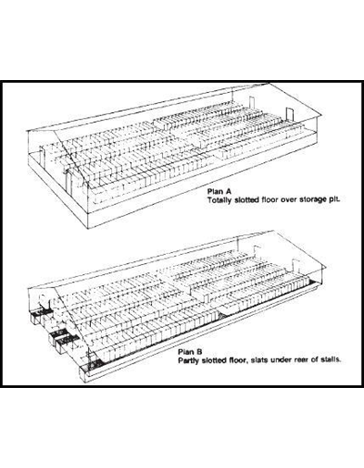 Four Rows of Stalls, 192 Sows -- Swine Gestation Building