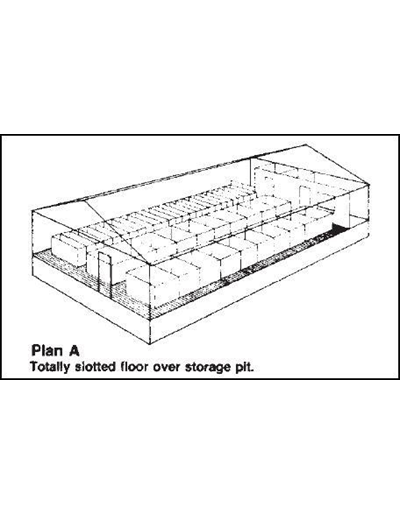 Farrowing and Gestation Building