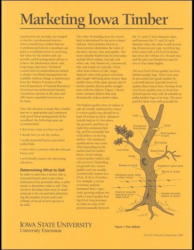 Marketing Iowa Timber