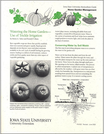 Watering the Home Garden -- Use of Trickle Irrigation