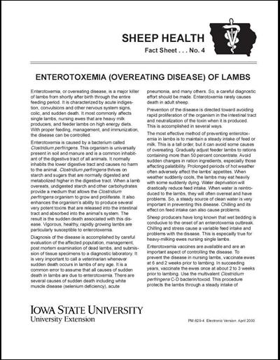 Enterotoxemia (Overeating Disease) of Lambs -- Sheep Health Fact Sheet No. 4