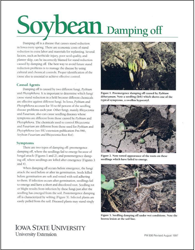 Soybean Damping Off