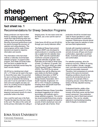 Recommendations for Sheep Selection Program - Sheep Management