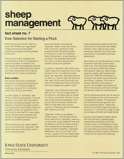 Ewe Selection for Starting a Flock - Sheep Management